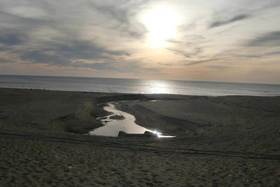 神栖市の海岸