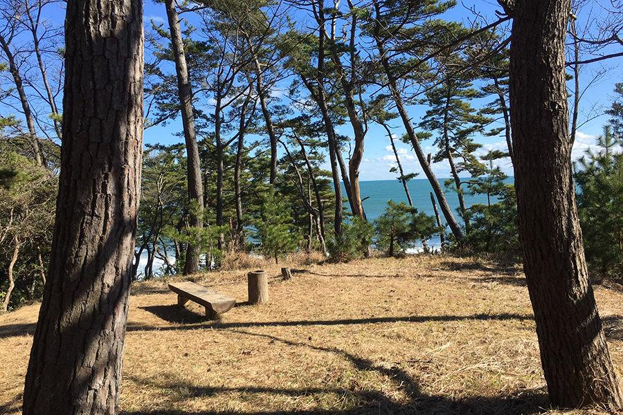 小貝ヶ浜緑地公園